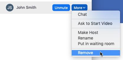 Zoom mute remove