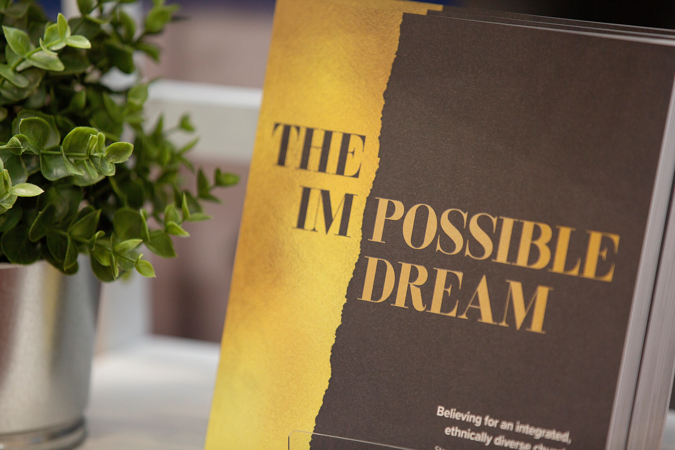 Impossible Dream book cover